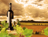 Italy Creative - Wine and Food Itineraries