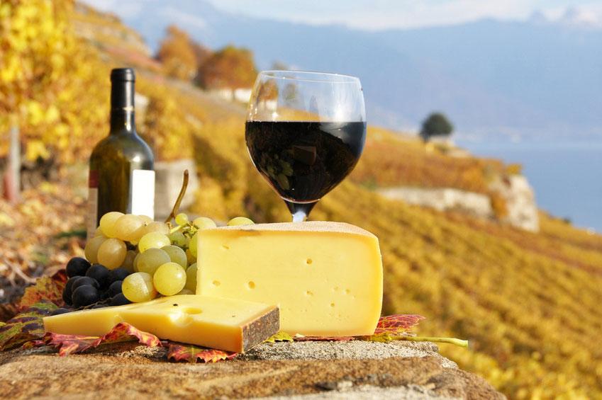 Swiss Wine Tours
