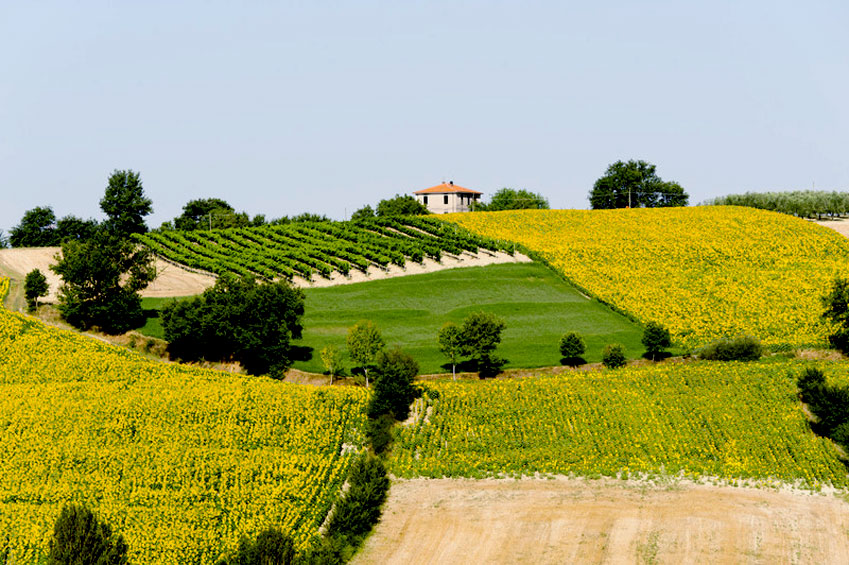 Sacred & Mystic   Perugia & Assisi   italycreative.it