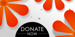 Travel and Shop Experience - Donate Now