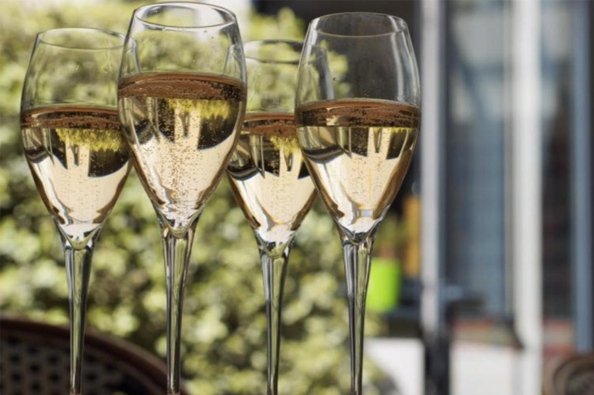 Wine Class Experience
